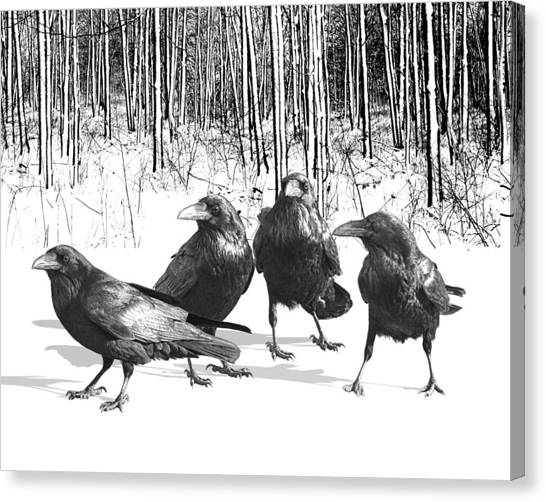 Ravens By The Edge Of The Woods In Winter Canvas Print