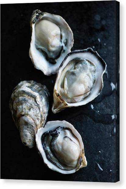 Raw Oysters Canvas Print