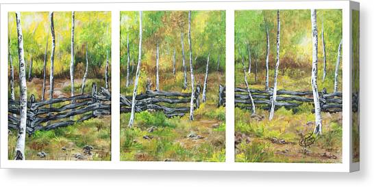 Ray's Meadow Canvas Print