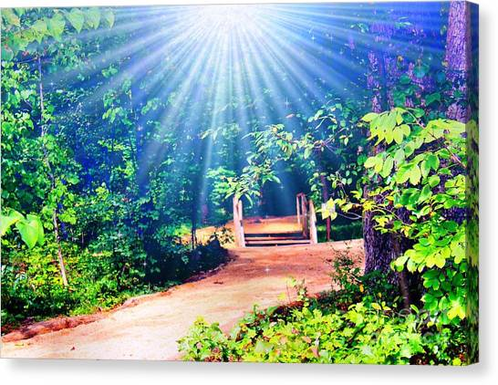 Rays Of Light To Guide The Path Canvas Print