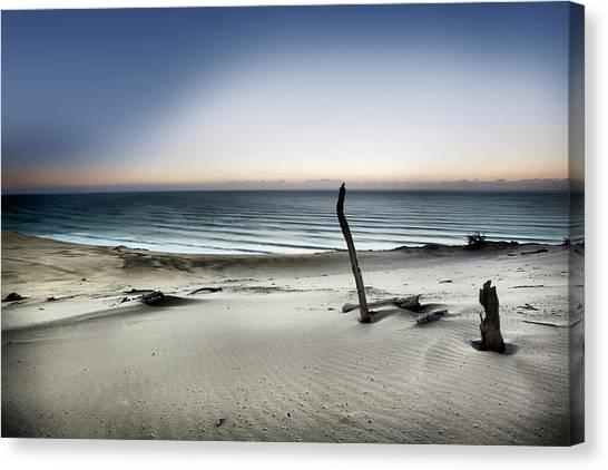Sand Dunes Canvas Print - Reach For The Sun by Mel Brackstone