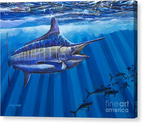 Tiger Sharks Canvas Print - Record Off0011 by Carey Chen
