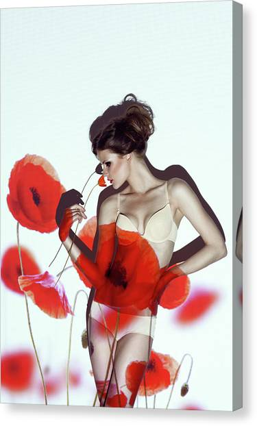 Nose Canvas Print - Red by