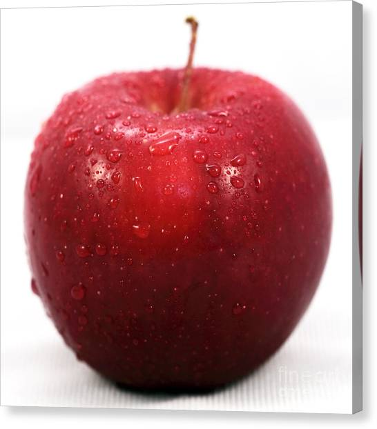 Red Apple Canvas Print by John Rizzuto
