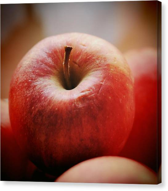Red Canvas Print - Red Apple by Matthias Hauser