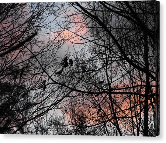 Red At Night Canvas Print by Penny Homontowski