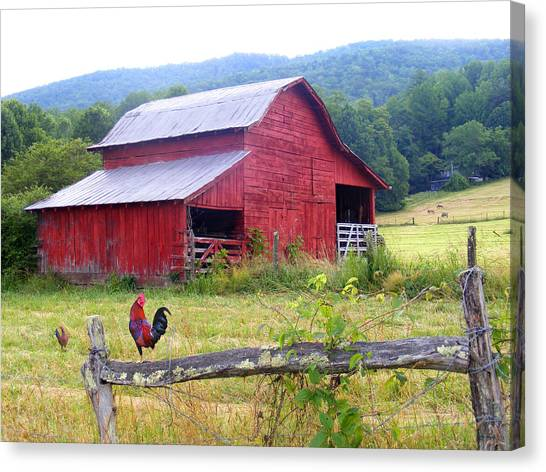 Red Barn And Rooster Canvas Print