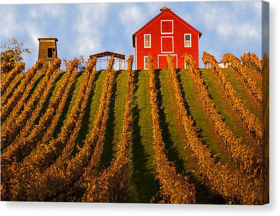 Wine Art Canvas Print - Red Barn In Autumn Vineyards by Garry Gay