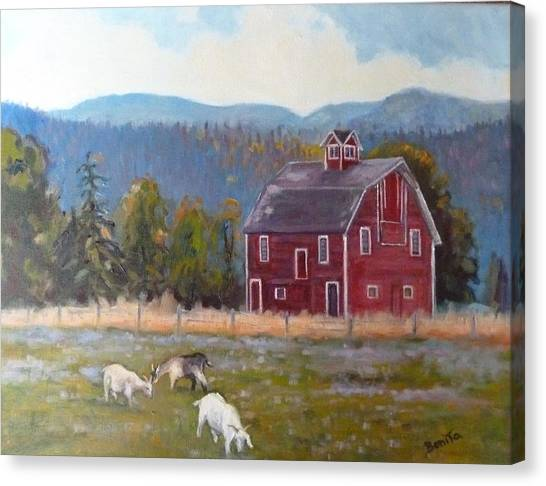 Red Barn In Montana Canvas Print