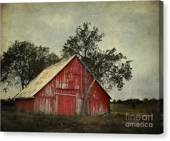 Red Barn With A Tree Canvas Print