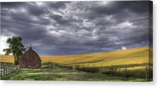 Contour Canvas Print - Red Barn With Lamas by Latah Trail Foundation
