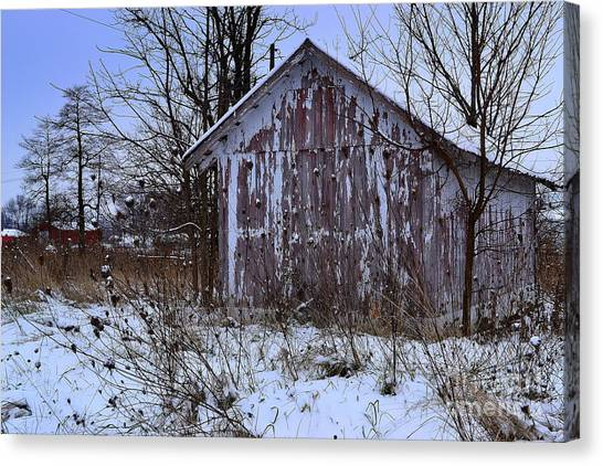 Red Barns In Winter Canvas Print