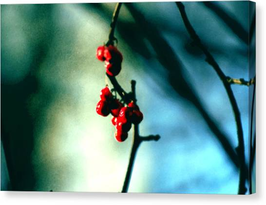 Red Berries On Canvas Canvas Print