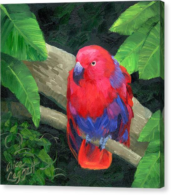 Parakeets Canvas Print - Red Bird by Alice Leggett