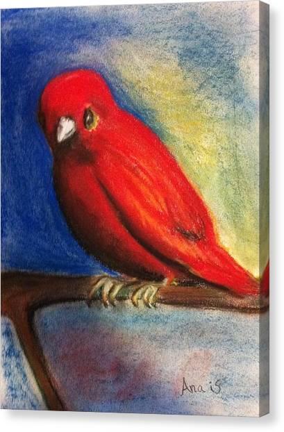 Red Bird Canvas Print by Anais DelaVega
