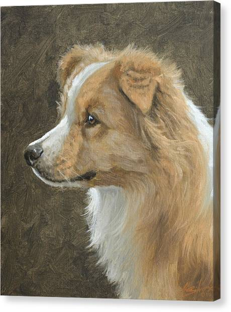 Canvas Print - Red Border Collie Portrait by John Silver