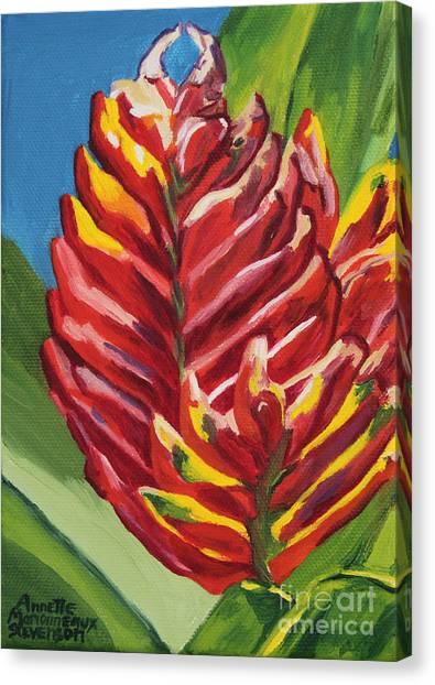 Red Bromeliad Canvas Print