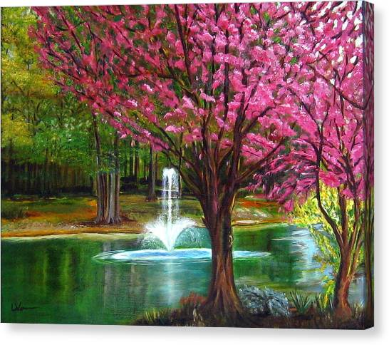 Red Bud Tree Canvas Print