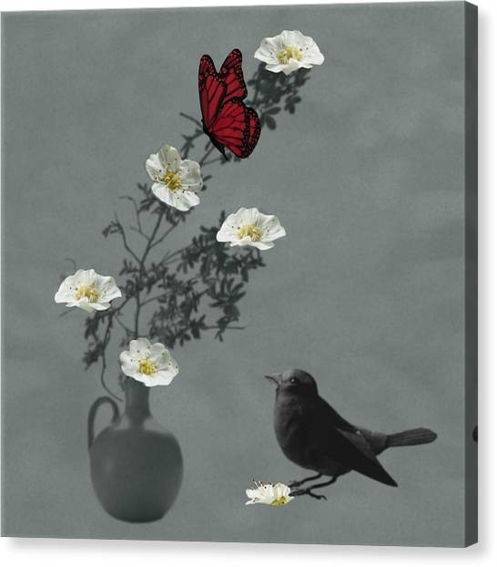 Red Butterfly In The Eyes Of The Blackbird Canvas Print