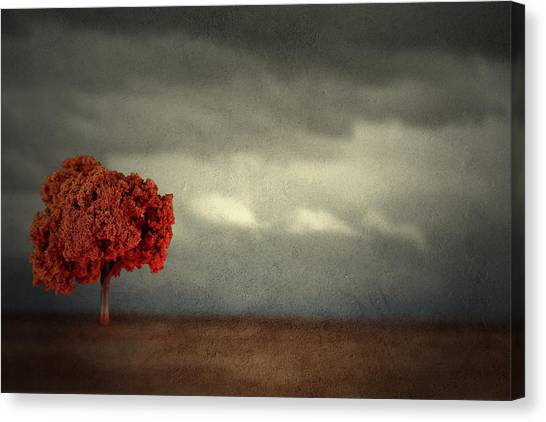 Red Carpet Thunder Canvas Print