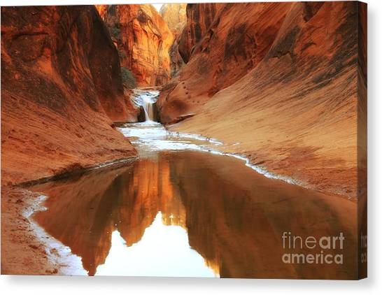 Red Cliffs Symphony Canvas Print