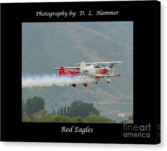 Red Eagles Canvas Print by Dennis Hammer