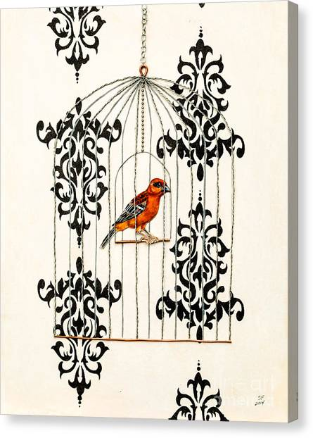 Red Finch Canvas Print