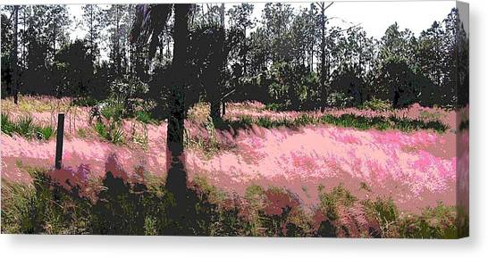 Red Fire Grass Field Gulf Coast Florida Canvas Print