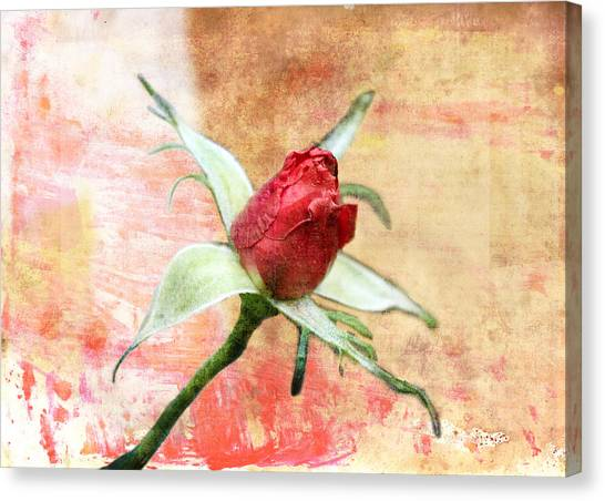 Canvas Print featuring the digital art Red Flower 1 by Helene U Taylor
