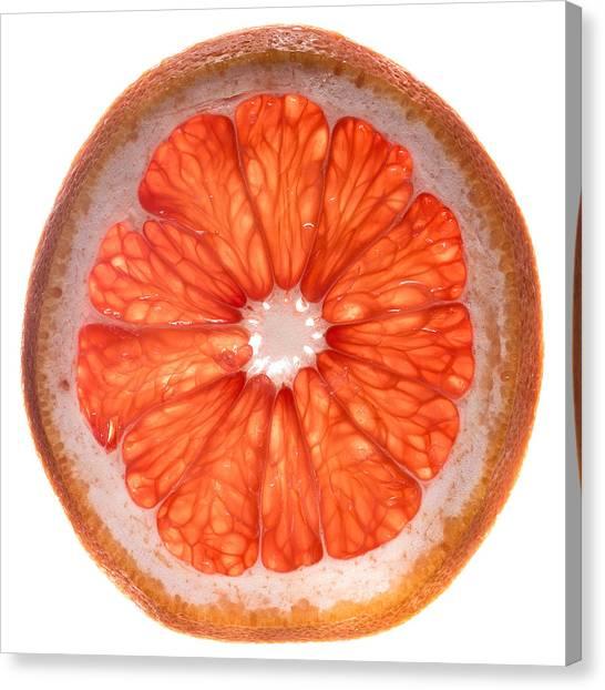 Grapefruits Canvas Print - Red Grapefruit by Steve Gadomski
