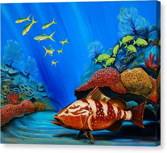Red Grouper Canvas Print