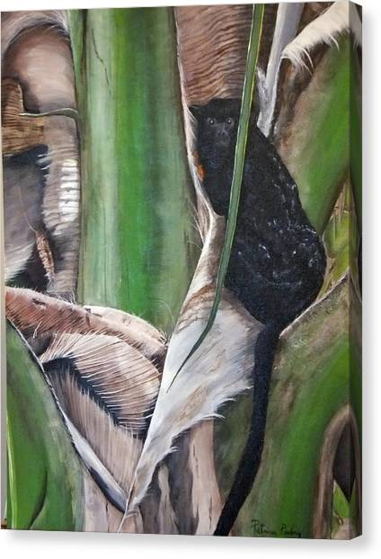 Banana Tree Canvas Print - Red Handed Monkey by Patricia Pasbrig