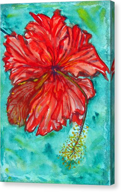 Red Hibiscus Flower Canvas Print by Kelly     ZumBerge