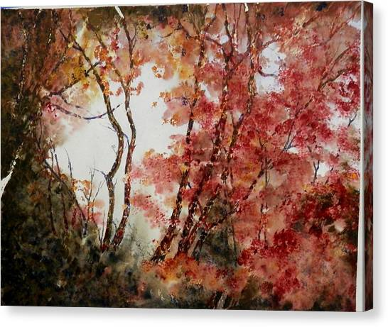 Red Hollow Canvas Print