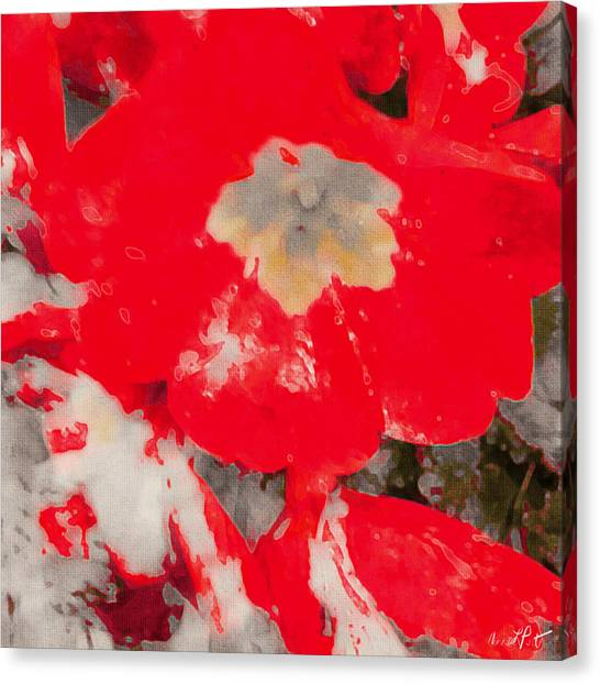 Abstract Flowers Canvas Print - Red Lacquered Primroses by Anna Porter