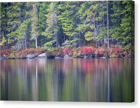 Canvas Print - Red Leaved Shrubs Dot A Shoreline by Robbie George