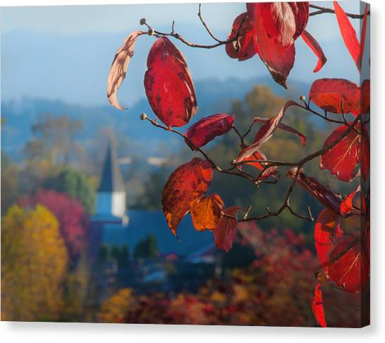 Red Leaves Blue Mountain Canvas Print by Dorothy Walker