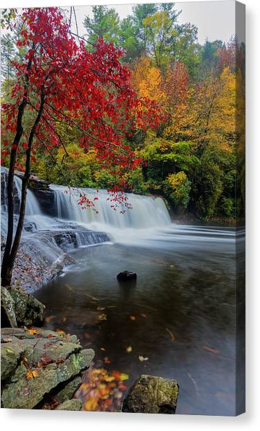 Water Falls Canvas Print - Red Leaves In Dupoint Park Hooker Falls by Andres Leon