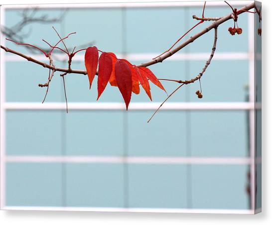 Canvas Print featuring the photograph Red Leaves by Viviana  Nadowski