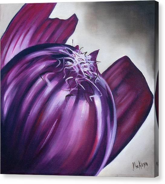 Onions Canvas Print - Red Onion by Ilse Kleyn