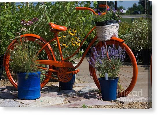 Red Orange Flower Basket Bike Canvas Print