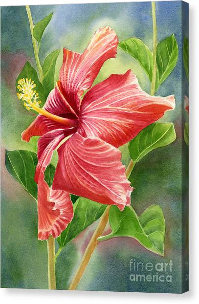 Costa Rican Canvas Print - Red Orange Hibiscus With Background by Sharon Freeman
