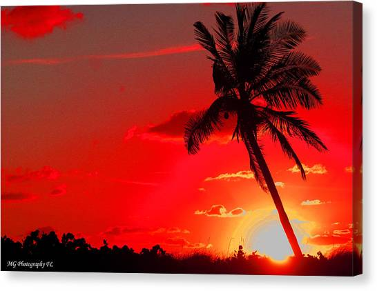 Red Palm Canvas Print
