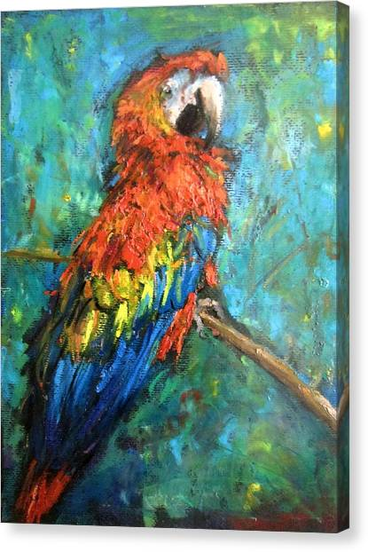 Red Parot Canvas Print