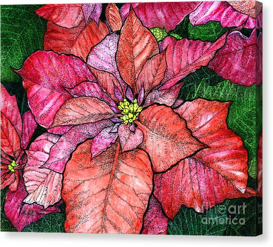 In Bloom Canvas Print - Red Poinsettias II by Hailey E Herrera