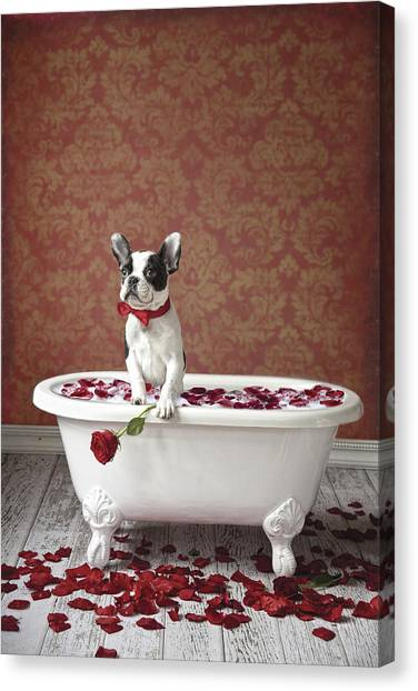 Doggy Canvas Print - Red Red Rose by Lisa Jane