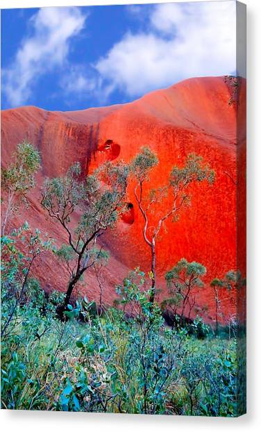 Red Rock Face Central Australia Canvas Print