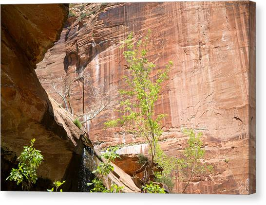 Red Rock With Waterfall Canvas Print