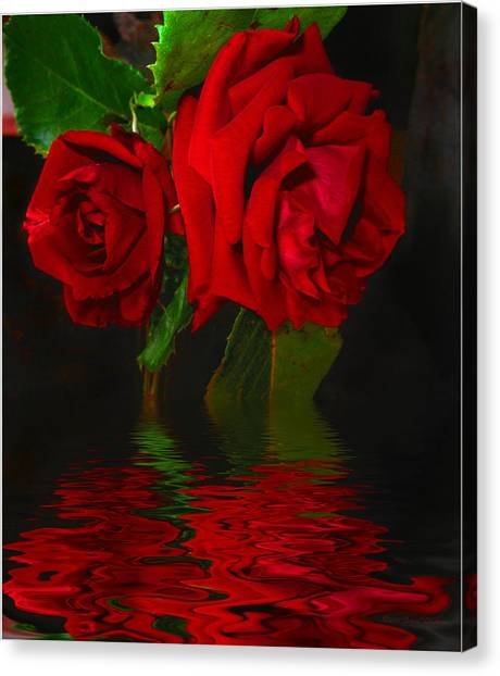 Red Roses Reflected Canvas Print
