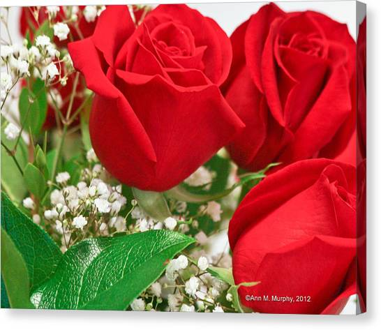 Red Roses With Baby's Breath Canvas Print